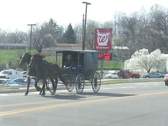 amish people in kentucky | Cross Country Road Trip: Nashville to Louisville, Ky.