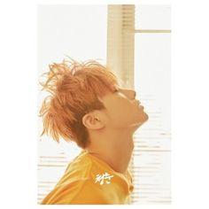 (予約販売)IKON / (写真集) [青春]ボリューム1 (キム・ジンファン) [IKON] :韓国音楽専門ソウルライフレコード- Yahoo!ショッピング - Tポイントが貯まる!使える!ネット通販
