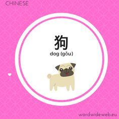 狗 dog Word Wide Web, Chinese Dog, Learn Mandarin, Cool Stuff, Learning, Words, Studying, Teaching, Horse