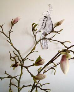 Art by Aastrøm - aastrom.dk #illustration #magnolia #bird