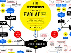 What Species Did You Evolve From? (Flowchart) by Matt Chase