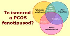 PCOS fenotípusok