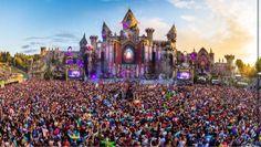 Experience Tomorrowland