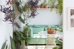 Greenterior: Plant-loving Creatives & Their Homes   http://www.yellowtrace.com.au/design-news-december-2015/