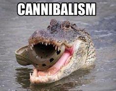 Funny cannibal jokes