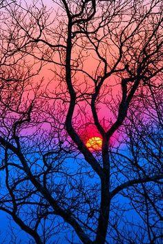 Zwei Farben die aber miteinander verbunden sein können. ✌