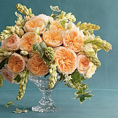 'Juliet' David Austen roses and tuberoses... peach perfection