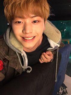 an actual sunflower Sungjae Btob, Im Hyunsik, Minhyuk, Yongin, Who Are You School 2015, Drama School, Im Single, Asian Cute, Kdrama Actors