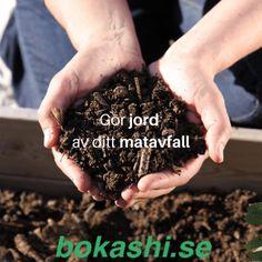 Jag beskär gurkväxterna - Sara Bäckmo Bokashi, Home And Garden, Kitchens, Lavender