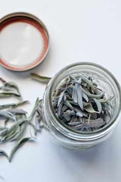 How to dry herbs. This will come in useful, especially since we buy herbs in larger quantities than we can use them.
