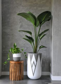 Amy's top 10 concrete picks: Coloured, metallic & much more! - The Interiors Addict Amy's top 10 concrete picks: Coloured, metallic & much more! - The Interiors Addict Concrete Crafts, Concrete Planters, Backyard Planters, Concrete Garden, House Plants Decor, Plant Decor, Big House Plants, Decoration Plante, Diy Plant Stand