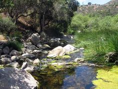 Elfin Forest is one of the many state parks in San Diego that offers gorgeous creek-side trails and amazing views. If you book a beachfront vacation rental in San Diego, you can enjoy the beach AND the trails!