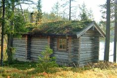 Finnish Log Sauna (kelo) - Professional log (kelo) builders from Finland Wooden Cabins, Months In A Year, Display Case, Finland, House Styles, Models, Summer, Home Decor, Pots
