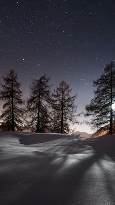 Sparkling Snow and Sky ...