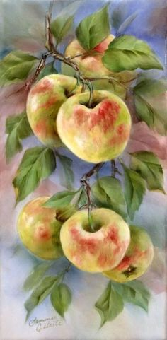 I think these apples are beautiful and they are almost exactly a copy of the ones that my husband grows in our garden! China Painting, Tole Painting, Painting & Drawing, Watercolor Paintings, Botanical Art, Botanical Illustration, Pictures To Paint, Art Pictures, Watercolor Fruit