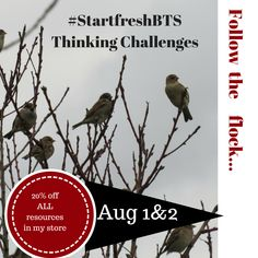 Fast Finishers, Flocking, 2 In, Challenges, Student, College Students