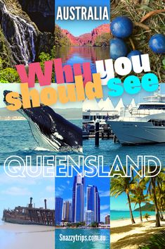 Why You Should Visit Queensland - I have visited Queensland several times and one of the things that amazes me the most is its immense size. It makes up almost a quarter of the whole continent of Australia. Is nearly 5 times bigger than Japan! Yep, you read that right. Find out more about the Sunshine State and what to do and see there. #queenslandtravel #visitqueensland #queenslandblog #queenslandsites #queenslandreef #queenslandcoastline #snazzytrips Cool Places To Visit, Places To Travel, Travel Destinations, Whitewater World, Australia Travel Guide, New Zealand Travel, Travel Guides, Travel Tips, Great Barrier Reef