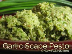 Garlic Scape Pesto | Scapes are the tall stems and unopened flower buds of certain hard-neck varieties of garlic. It's important to snip them off before the flowerheads mature, so the plant will direct more energy into developing its own garlic bulb. Then of course, eat the scapes! My favorite way is this pesto, which accompanies pasta, chicken, salmon, potato salad, and burgers beautifully. | GNOWFGLINS.com
