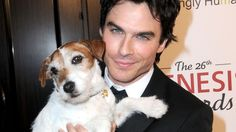 37 Pics Of Ian Somerhalder With Animals That Make Him Even Sexier  / He's tongue-waggingly hot.