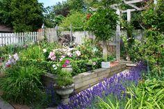 Arkitektens trädgård; Marika Delin. Upphöjd rabatt byggd av
