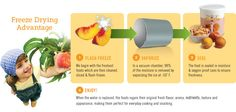 Freeze-Dried Foods versus Dehydrated Foods