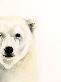 is on a 140 lb watercolor paper. Polar Bear Paint, Polar Bear Face, Baby Polar Bears, Baby Pandas, Panda Bears, Bear Face Drawing, Polar Bear Drawing, Bear Paw Tattoos, Polar Bear Tattoo