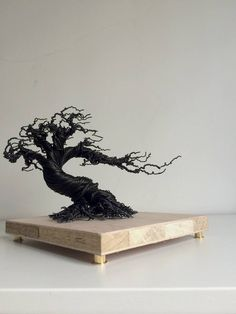 Wind blow wrapped bonsai minus the beads Bonsai Tree Price, Buy Bonsai Tree, Japanese Bonsai Tree, Bonsai Trees For Sale, Bonsai Tree Care, Tree Wall Art, Tree Art, Wire Tree Sculpture, Wall Sculptures