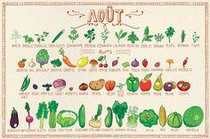 un tableau de légumes du mois d'août .a récolté