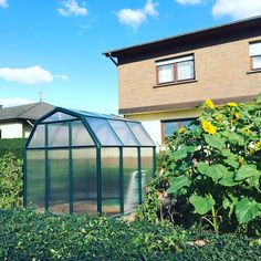 palramappsA greenhouse is not just a part of the garden, but also of a healthy lifestyle 🌱 Photo showing a Rion EcoGrow 6x6 model courtesy of www.mygardenhome.de