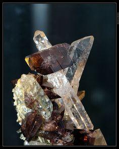 Axinite on Quartz - Le Rocher d'Armentier, Bourg d'Oisans, Isère, Rhône-Alpes, France Size: 40 mm