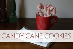 Discover 10 must-try holiday cookie recipes!
