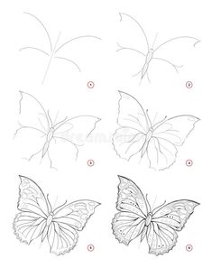 How to draw sketch of beautiful fantastic butterfly. Creation step by step pencil drawing. Education for artists. Textbook for developing artistic skills. Hand-drawn vector on computer. Art Drawings Sketches Simple, Flower Sketches, Pencil Art Drawings, Animal Drawings, Easy Sketches To Draw, Beautiful Pencil Drawings, Step By Step Sketches, Pencil Sketching, Eye Drawings