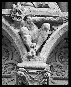 Photo Notre Dame Gargoyle Paris 8 x 10 or 5 x by photographygirls