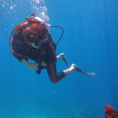 My first diving at Bunaken Island, Indonesia