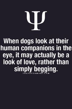 thepsychmind: Fun Psychology facts here! Psychology Says, Psychology Fun Facts, Psychology Quotes, Fact Quotes, Me Quotes, Psycho Facts, Life Lessons, Favorite Quotes, Inspirational Quotes