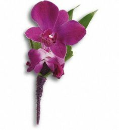 FDH Perfect #Purple_Orchid_Boutonniere :- An exotic pick with confidence and style. Purple dendrobium orchids, Italian ruscus and a galax leaf bundled in a purple satin ribbon.