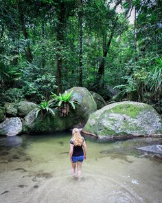 Instagrammable spots Cairns: Mosman Gorge Cairns Australia, Visit Australia, Mission Beach, Paradise Island, Great Barrier Reef, Countries Of The World, Places To See, Cool Photos, The Incredibles