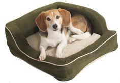 Making Comfortable Custom Dog Beds - http://concept.anadolugkm.com/making-comfortable-custom-dog-beds/ : #DogBeds The custom dog beds need not be an expensive or luxurious store to look good at home and please the dog. Try one of the methods described below to make a bed for decorative dog, which will make your puppy feel comfortable at night without costing you a pretty penny. Choose fabric bed for custom...