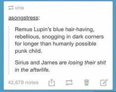 Sirius and James laughing their incorporeal heads off about how much of a sassy punk their best friend's son is, and teasing Remus mercilessly (just Teddy Lupin stuff) Harry Potter Fandom, Harry Potter Universal, Harry Potter Memes, Potter Facts, Hogwarts, Slytherin, Drarry, Dramione, Fandoms