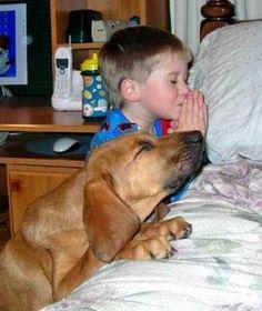 Un copil impreuna cu un catel se roaga la Doamne Doamne :)