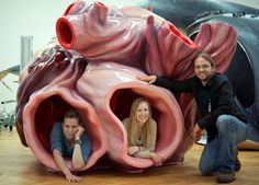 """The Blue Whale's Heart Is As Big As A Small Car  >>Contains a sound system for arterial-explorers to hear & feel the whale's heartbeat >>This 1:1 model of said heart is constructed by New Zealand company """"Human Dynamo Workshop"""" >>Originally commissioned for The Museum of New Zealand Te Papa Tongarewa, the model impressed curators at the LWL Museum of Natural History in Munster, Germany, so much that they ordered one for themselves=)"""