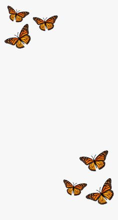 #filter #butterfly #orange #black #aesthetic - Monarch Butterfly, HD Png Download , Transparent Png Image - PNGitem