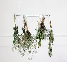Gedroogde kruiden zijn altijd handig, ruiken lekker en bovendien prachtig om op te hangen |piet klerkx