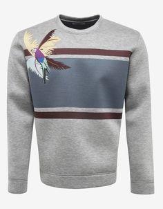 Grey Sweatshirt with Parrot Graphic