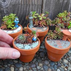 CUTE ALERT!! Make a set of three mini-mini gardens to sprinkle around the house or have a Miniature Garden Party! They are the PERFECT office gift, thank you, co-worker or hostess gift. Its a very fun and easy project and full color instructions are included. You will receive 30 Sedum cuttings to plant in the three pots, a small sheet of stone that you can cut up or peel the stones off and lock-in with our Mini Patio Mix Kit. PLUS three different miniature accessories to place in each…