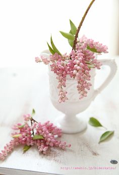 of pink flowers