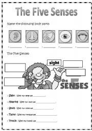 Worksheets Teaching Worksheets english teaching worksheets facial expressions life skills face and body