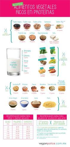 Infografía: alimentos vegetales ricos en proteínas – Vegan Police