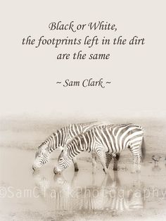 Black or White, the footprints left in the dirt are the same ~ Sam Clark Photography