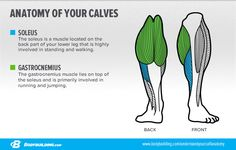 Want to grow those stubborn calves? Study the 6 most important calf-building concepts you need to know before stepping back into the gym!